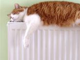 Отопление в Талдоме.